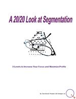 20/20 segmentation whitepaper