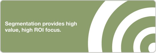 marketing segmentation consulting services